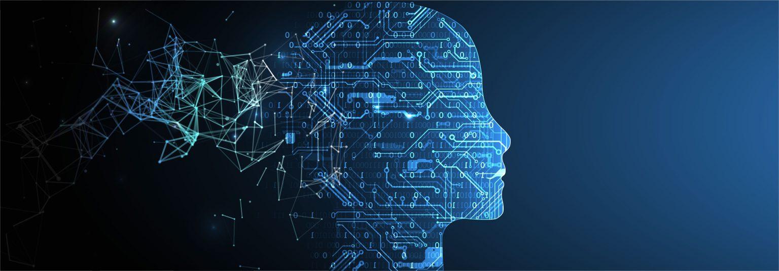 Polepharma - cerveau réseau