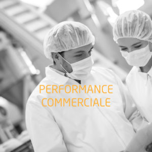 Formations performance commerciale