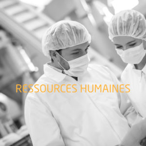 Formations ressources humaines